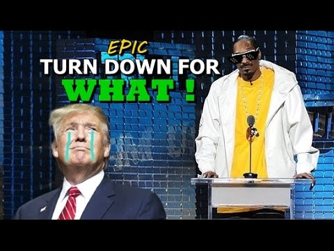Deal With It || Turn down for what || Snoop dogg a Donald Trump.
