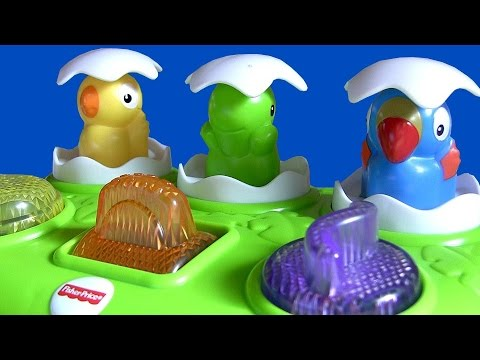 Musical Pop-Up Pals Birds Surprise Eggs Lights n Sounds Toy for Toddlers Baby Toys by ToyCollector