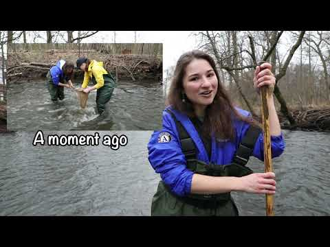 Stream Assessment-Rahway River Conducted On March 20, 2020