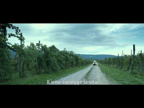 ZORAN, IL MIO NIPOTE SCEMO - Clip Film - Chi lassa el vin furlan, Xè proprio un fiol de un can