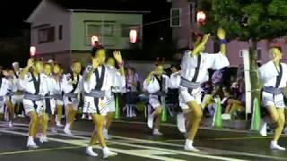 下島連/コンテスト演舞・かいせい演舞場/第31回 開成町阿波おどり2018