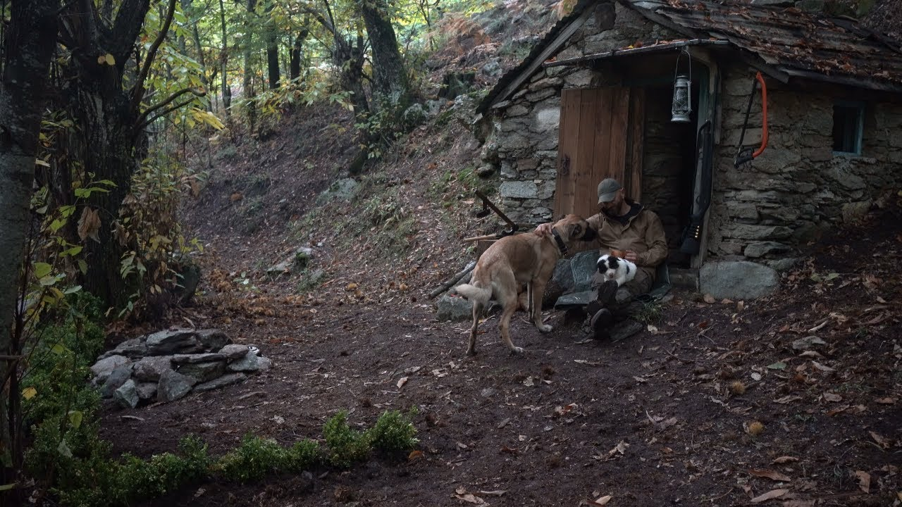 2 days solo in the chestnut forest in a 50 years old abandoned stone cottage.Found a powerful puppy