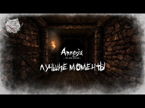Amnesia - Лучшие Моменты [Нарезка]