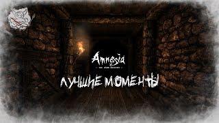 Amnesia - Лучшие Моменты Нарезка