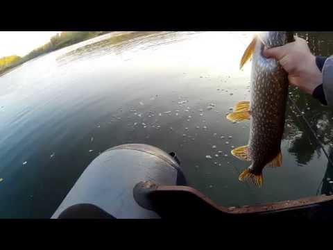 оренбург на рыбалку октябрь