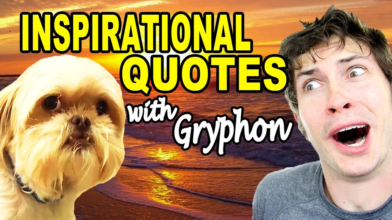 Tobuscus Gryphon Dog