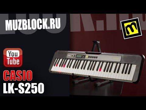 CASIO LK-S250 - обзор синтезатора с подсветкой клавиш