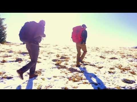 Last Stand - The Vanishing Caribou Rainforest