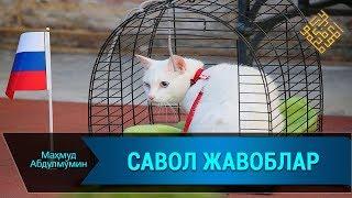 САВОЛЛАРГА ЖАВОБЛАР/ SAVOLLARGA JAVOBLAR