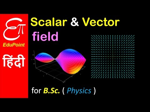 Scalar field and Vector field | Physics video in HINDI | Edu