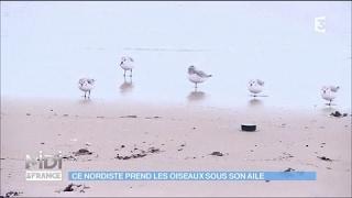 Un ornithologue passionné dans le port de Dunkerque