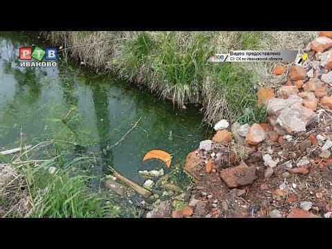 Ребенок утонул в канаве