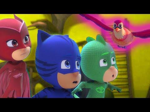 PJ Masks Deutsch Pyjamahelden 🌟 Eulettes gefiederter Freund 💚 Cartoons für Kinder