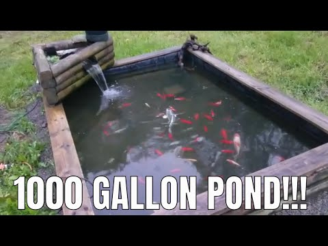 1000-gallon-raised-pond---how-it-works!