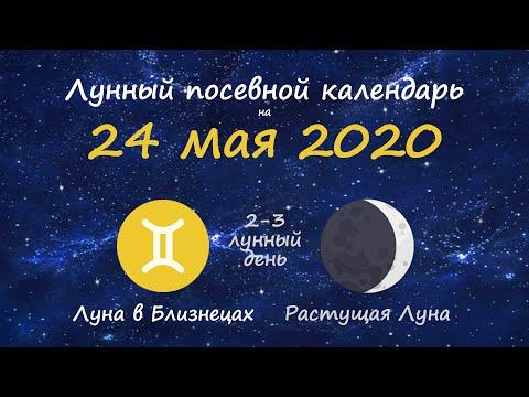 [24 мая 2020] Лунный посевной календарь огородника-садовода