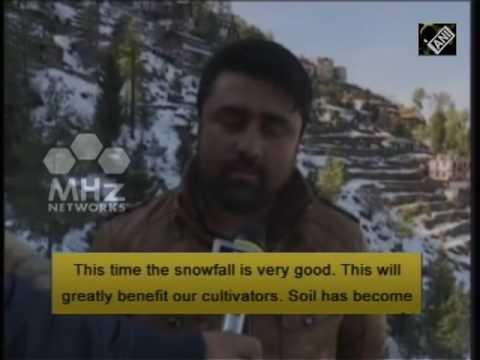 Snowfall brings cheer to apple growers in northern India (08 Feb,2017)
