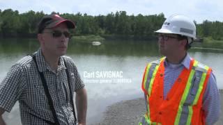 Canada : le nouvel envol du faucon pélerin