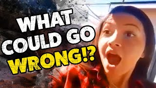 What Could Go Wrong? #20 | Funny Weekly Videos | TBF 2019
