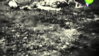 Завершение Старорусской операции, 19 марта 1943 года
