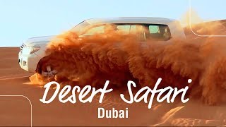 Desert Safari in Dubai with ES Dubai | BBQ Dinner | Falcon Experience | Camel Riding  | Dune Bashing