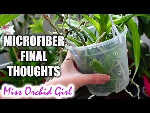 Using microfiber with Orchids - Final thoughts