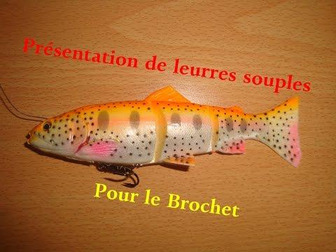 Présentation De Mes 5 Meilleurs Leurres Souples Pour Le Brochet