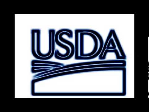 usda rural development direct housing loan overview
