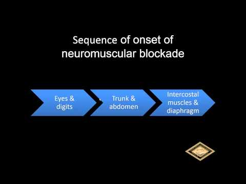 Basics Of Anesthesia: Neuromuscular Blockers