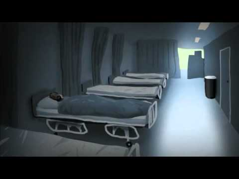 Guantánamo Bay: The Hunger Strikes - video animation