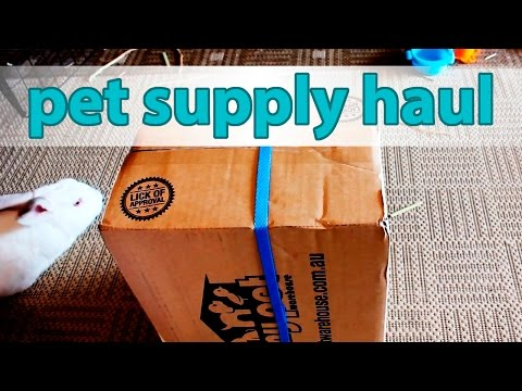 Pet Supply Haul – Rabbit and Parrot | My Pet Warehouse