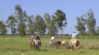 Estancia Buena Vista - Horsebackriding In Argentina - Reiten In Argentina