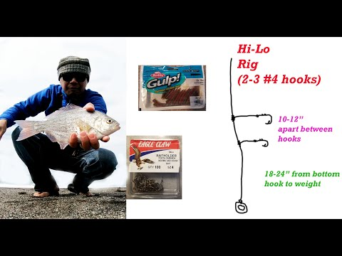 How To Catch Redtail Surf Perch.  Rig Setup, Bait, And Hooks. Port Orford, Oregon
