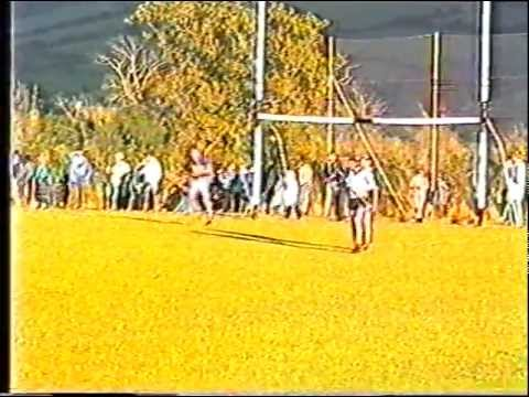 St Patricks Anner Park Cloneen Drangan Official Opening Tipperary Dublin senior hurling 14 May 1989