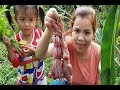 Yummy Cooking Frog W/Holy Basil Recipe-Cook Frog Recipe-Village Food Factory-Asian Food-Amazing Food