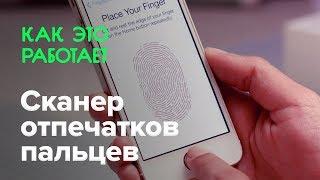 touch ID: как работает сканер отпечатков пальцев в iPhone 5s