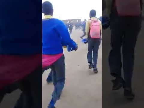 WATCH: Pangas used in fight between Limpopo learners