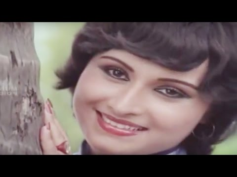 Malayalam Evergreen Film Song    Poo chirichu..    Agnisharam    Pandran,Vani Jayaram