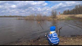 РЫБАЛКА НА ФИДЕР ВЕСНОЙ Мой 4 х летний сын обловил меня Рыбалка на Оке