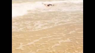holdmybeer, donezo   Guy Tries to Skimboard at the Beach