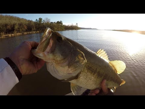 Pre-Spawn Bass Fishing 2018 ! Catching Bass With Live