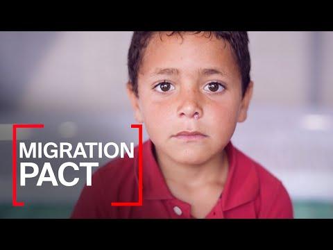Migration Pact - Firma la petizione