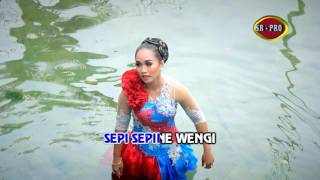 Udan Deres - Dian Punjung (Official Music Video)