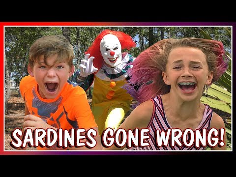 😱SARDINES AT THE PARK😱| HIDE AND SEEK | We Are The Davises