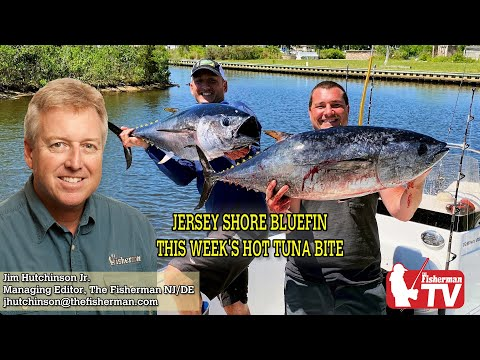 June 11, 2020 New Jersey/Delaware Bay Fishing Report With Jim Hutchinson, Jr.