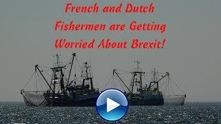 🐟 French and Dutch Fishermen are Getting Worried About Brexit! 🐟
