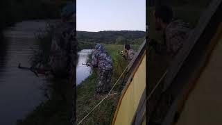 Камчатка. Безстрашная медведица рвется в лагерь рыбаков