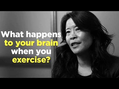 One Question: What happens to your brain when you exercise?