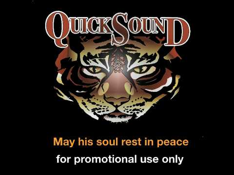 Michael Jackson Remix_Rock With You_by Quicksound