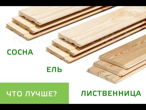 Uploads from Сибирская Лиственница - YouTube