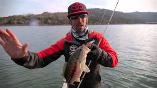 Finding Fishing Patterns with Crankbaits (Scatter Rap)